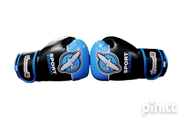 Boxing Gloves-2