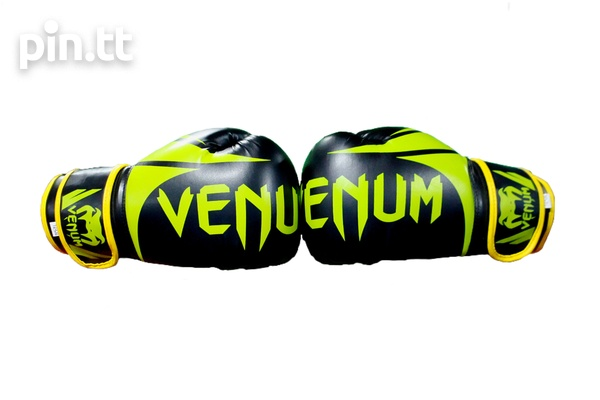 Boxing Gloves-4