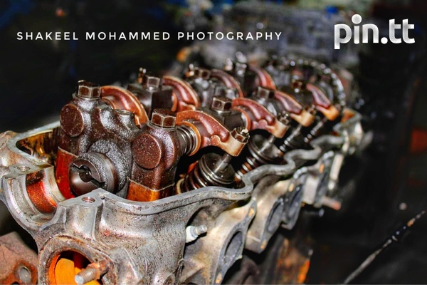 Professional Photographer Services-7