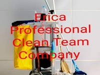 Erica Professional Clean Team company