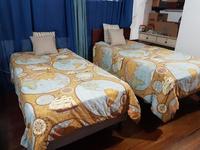 Two Single beds with matresses and comforters