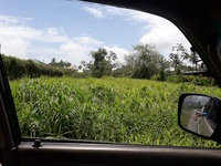 1 Acre Land in Factory Road, Piarco
