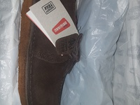 Mens Desert Trek Clarks shoes