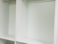 Clothing or miscellaneous shelves