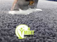 Mint condition steam cleaning services