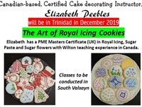 The Art of Royal Icing Cookie Class