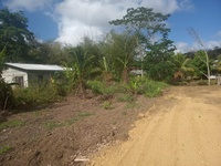 Freehold Land, Tabaquite