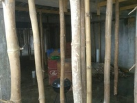 Free Bamboo for Decking Support