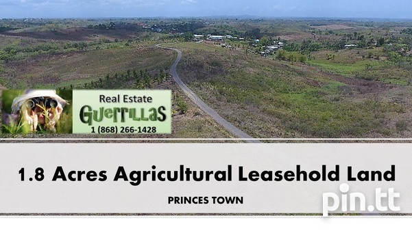 AGRICULTURAL LAND IN PRINCES TOWN-1