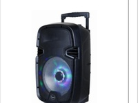 Soundwave 10 inch Portable Speaker with LED Lights