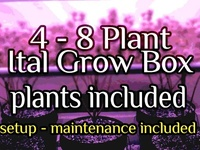 4 - 8 Plant Ital Grow Box - Entire Kit includes setup / maintenance