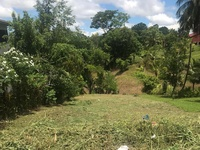 Ready to Build Land-1 1/2 Lots-Discounted