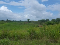 7 Acres Freehold Land, Couva