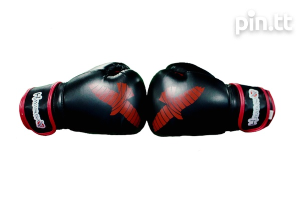 Boxing Gloves-5