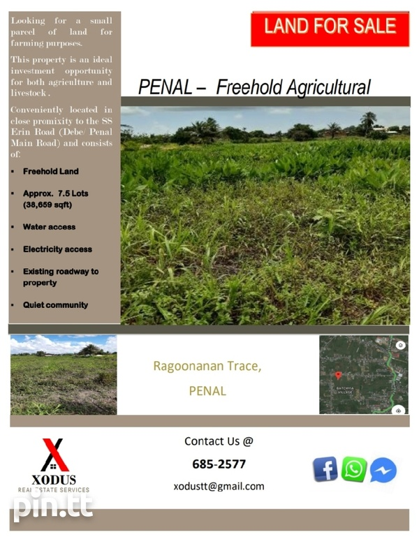 Penal Freehold Agriculture Land