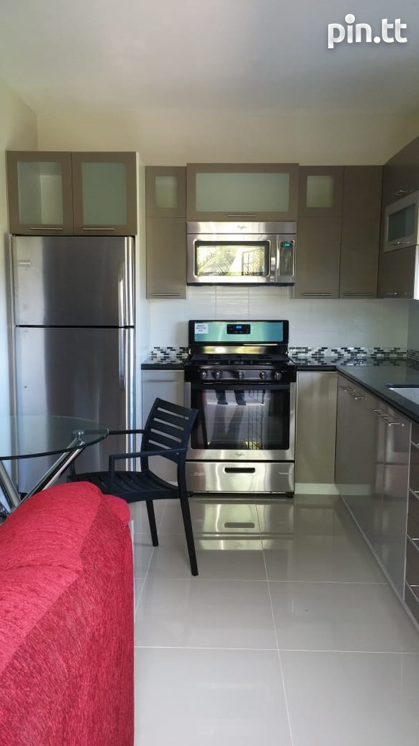 Executive Fully Furnished-7
