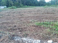 Limited Lots in Residential Development
