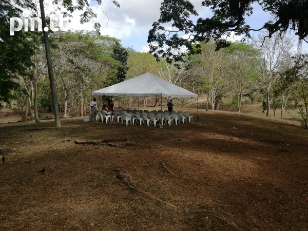 Tents, Chairs, Tables and Table Cloth Rentals-2