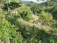 1 Lot Blanchisseuse Road