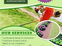 TURF Maintenance Services