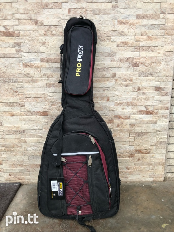 Guitar and case-1