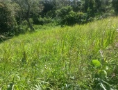 1/2 Acre Residential Land with Approvals