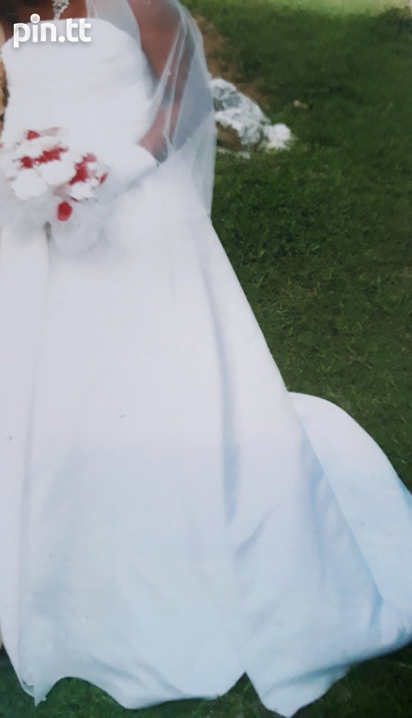 Wedding gown and veil-3