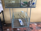 Three Aquariums With Stand