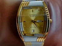 Citizen Male Gold Watches
