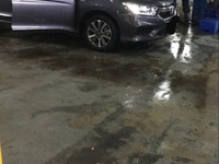 Honda City 2019 Scrapping For Parts