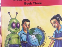STANDARD 3 Reading Book