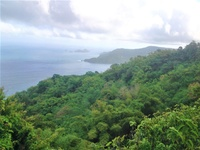 225 Acres - Speyside, Tobago