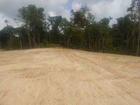 Freehold Land Warden Road Sangre Grande