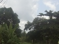 3 Lots off Tumpuna Road Arima