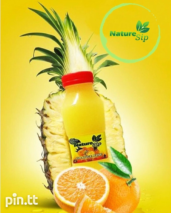 Nature Sip Fresh All Natural Juices.-3