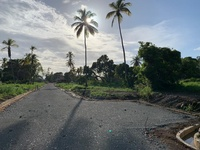 Residential Land Parcels at Tamarind Park, Tobago