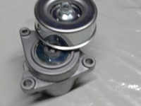 NISSAN X-TRAIL Tensioner pully NT30