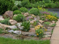 Perfect View Design Services Commercial and Residential landscaping