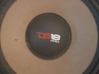 A pair of Ds18 10inch midbass