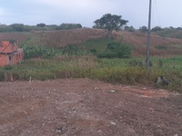 2 lots of land Chickland