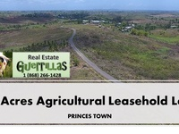 AGRICULTURAL LAND IN PRINCES TOWN