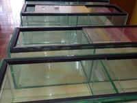 Glass cases, 9 pieces available