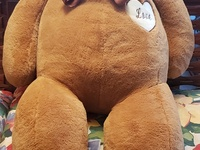53 inch Teddy Bear