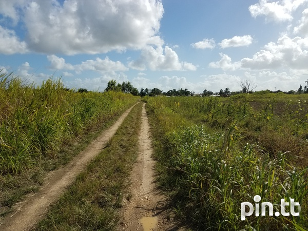 Two Acres Brickfield-2