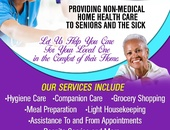 Professional home care
