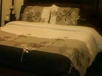 Wooden Queen size bed frame and upholstered wooden headboard