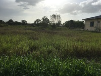 Final Approved 2 lots - Land in Abass Ali - Carapichaima