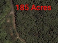 FLANAGIN TOWN. 185 Acres for Homestead or Residential development